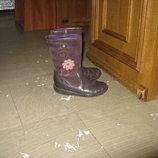 Демисезонные кожаные сапоги сапожки Clarks
