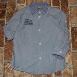 рубашка котон лето 4года большой выбор одежды 1-16лет