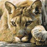 Картина по номерам Хищница KHO2485