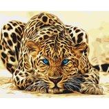 Картина по номерам. Животные, птицы Дикая кошка KHO2450