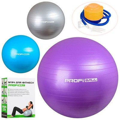 Мяч для фитнеса PROFI 55 см насос 1539