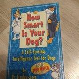 На скільки розумна ваша собака. Тест