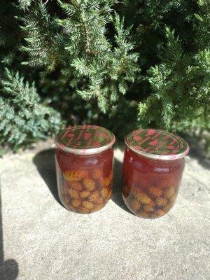 Варенье сироп из шишек, боров мед от кашля, простуды