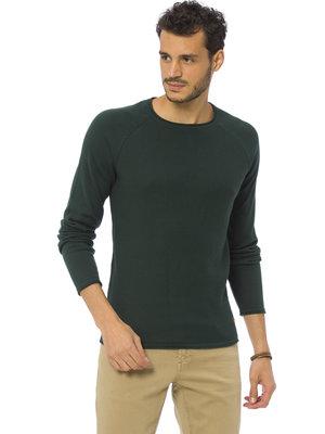 Зеленый мужской свитер LC Waikiki / Лс Вайкики
