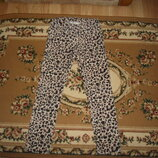 Штани вельветові тигрові H&M на 7-8 років 128 cм