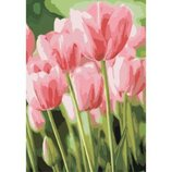 Картина по номерам. Весенние тюльпаны 35х50см KHO2069