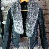 Куртка пиджак Zebra