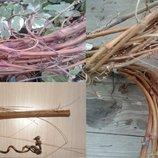 Ветки натуральные Лоза диаметр 1 - 2 см, 5 шт - выбор длины