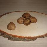 Скорлупа грецкого ореха 50 шт