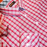 GIN TONIC Отличная рубашка - XL - L