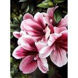 Картина по номерам Цветы Розовая лилия 30 40 KHO2911