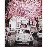 Картина по номерам Volkswagen Beetle 40 50см KHO3521.