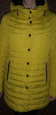 Женская весенняя осенняя куртка деми демисезонная куртка