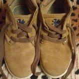 Туфлі для хлопчика Next