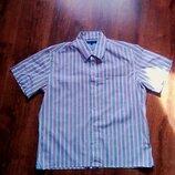 Рубашка в красно-синюю полоску Tommy Hilfiger