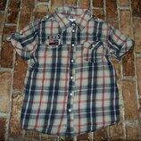 рубашка котон лето 7-8лет большой выбор одежды 1-16лет