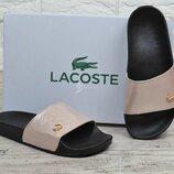 Шлепанцы женские кожаные Lacoste пудра розовые лучшее качество
