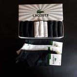 Набор 9 шт. Носки Lacoste в подарочной коробке