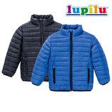 Куртка демисезонная Lupilu куртки термо дутик