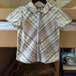 Летняя рубашка H&M ориентир на рост 134см