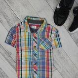 Рубашечка F&F на 2-3 годика