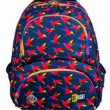 Школьний рюкзак rainbow birds