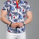 Новиночки Мужская рубашка, размеры 44- -52