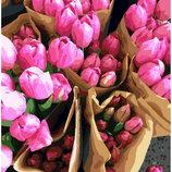 Картина По Номерам. BRUSHME Голландские Тюльпаны GX7520