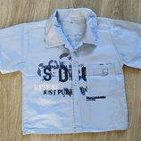 Лето Стильная рубашка Очень легкая х/б Голубой Чтоб не обгорали плечи Отличная легенькая рубашечка