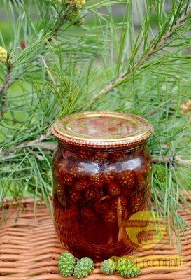 Варення-Сироп з соснових шишок, 1161