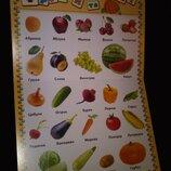 Дитячі книги картон Перша книга малюка словниковий запас, букви , цифри та ін.