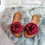 Шлепанцы летняя обувь
