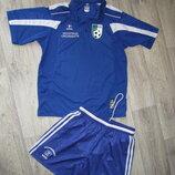 Форма мужская L р. 48-50 спортивная футбольная футболка шорты