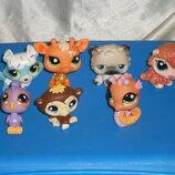 коллекционно-игровые фигурки Littlest Pet Shop LPS Hasbro Сша оригинал