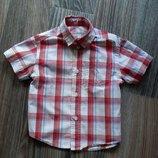 Шведка, рубашка с коротким рукавом Rebel, 2-3 г, 98