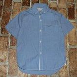 хлопковая тениска рубашка 3 года большой выбор одежды