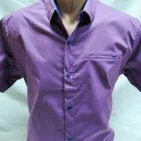 Шведка мужская Noseda стильная ,сиреневая с рисунком и карман-обманка 3XL,4XL,5XL,6XL