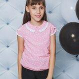 Блуза школьная горох персик 122-152