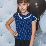 Блуза школьная горох синяя 122-152