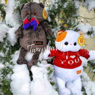 Мягкая игрушка Мини Басик, толстый кот Басик Basik и кошечка Лили Lili Украина отличный подарок