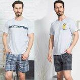 Пижама мужская футболка и шорты 1xl-4xl