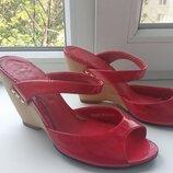 Брендові босоніжки жіночі Queen for Ellenka 35-36 туфли женские 24 см