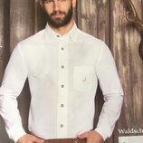 Белая рубашка мужская классика хлопковая