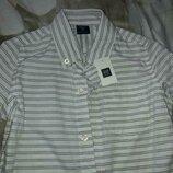 Новая рубашка gap хлопок, 4-5 лет