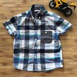 Классная рубашка george 4-5 лет 104-110 рост