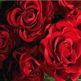 Картина по номерам Брашми. Brushme Бутоны красных роз GX24563