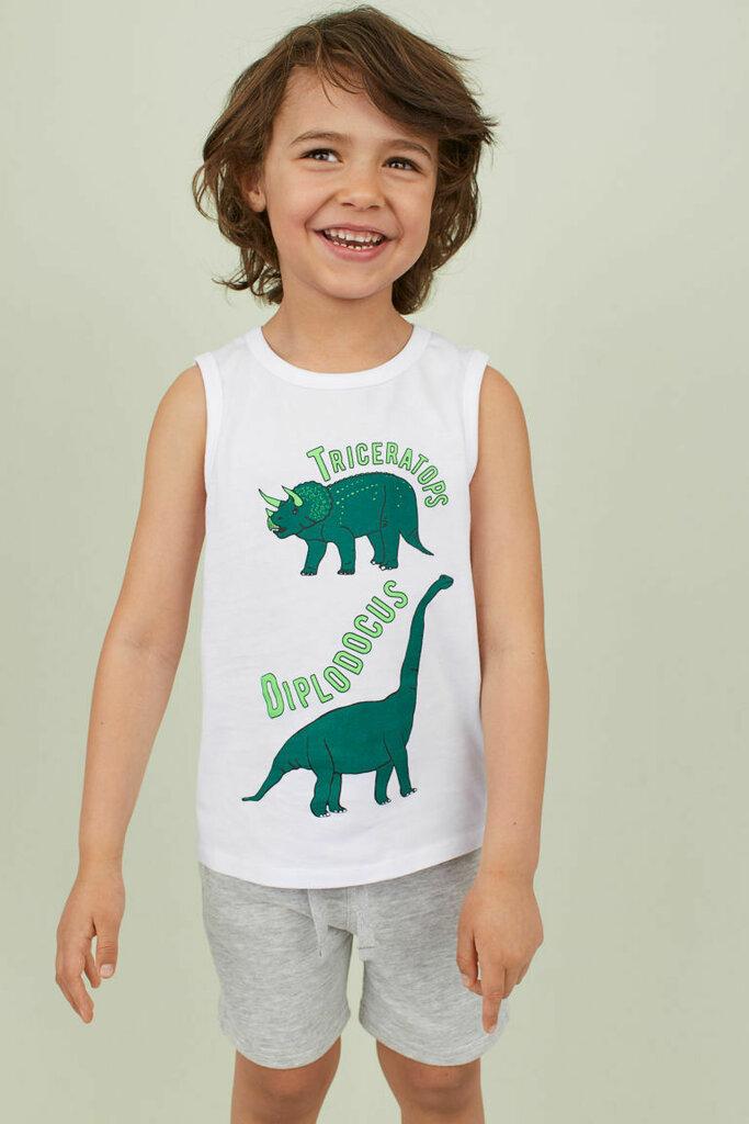 Майка с динозаврами для мальчика H&M: 120 грн - футболки, майки h&m в Днепропетровске (Днепре), объявление №22665423 Клубок (ранее Клумба)