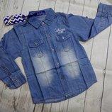 Джинсовые рубашки 116-140. Венгрия S&D