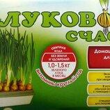 прибор для выращивания лука-домашний парник