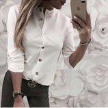 Прекрасная стильная, нарядная блузочка длинный рукавчик или 3/4, разные расцветки и размеры